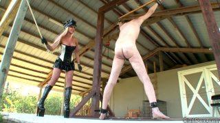 Beg for Her Cane Clubdom.com – sexytube.vip