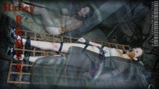 Hailey Redux Part One Realtimebondage.com – sexytube.vip