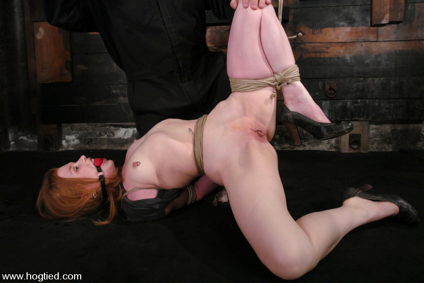 Madison Young Hogtied