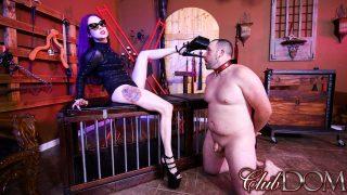 Worshipping Goddess Valora's.. Clubdom.com – sexytube.vip